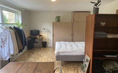 Projekt Fuglsang: Step 2